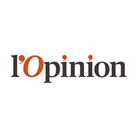 vignette_opinion